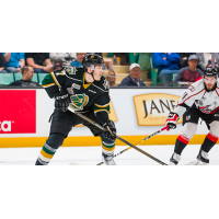 London Knights LW Matthew Tkachuk vs. the Rouyn-Noranda Huskies
