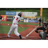 Travis Weaver of the Florence Freedom