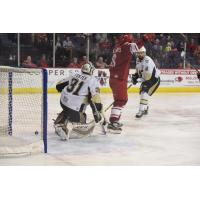 Allen Americans Celebrate a Goal vs. the Wheeling Nailers