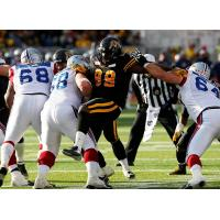 Tampa Bay Storm Defensive Lineman Torrey Davis (99) with the Hamilton Tiger-Cats