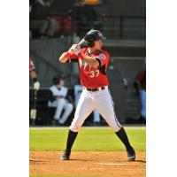 Carolina Mudcats First Baseman Joey Meneses