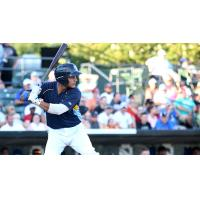 Gioskar Amaya of the Myrtle Beach Pelicans
