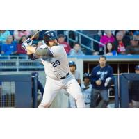 Chase McDonald of the Corpus Christi Hooks