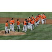 Long Island Ducks Exchange High Fives