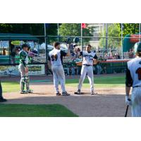 Green Bay Bullfrogs Celebrate at Home Plate