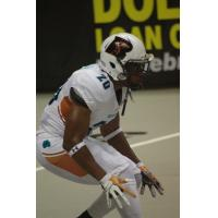 Jeremy Kellem of the Arizona Rattlers