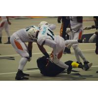 Al Phillips and the Arizona Rattlers Deliver a Hit vs. the LA KISS