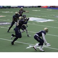Tri-Cities Fever vs. the Nebraska Danger