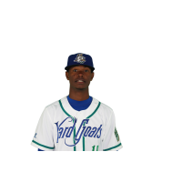 Hartford Yard Goats OF Raimel Tapia