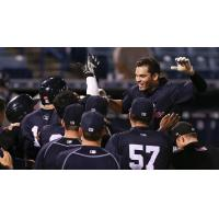 Tampa Yankees Greet Vicente Conde at the Plate following his Walk-Off Grand Slam