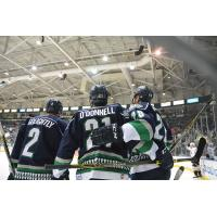 Everblades Extend Qualifying Offers to Eight Players