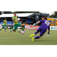 Rowdies Settle for 1-1 Draw in Front of Record Crowd