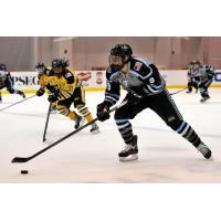Buffalo Beauts Complete 2016-17 Roster with Four Players