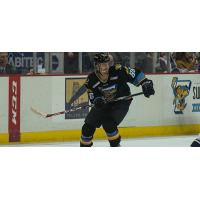Walleye All-Time Goal Scorer Returns