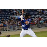Clint Coulter Named Southern League Player of the Week