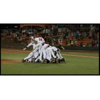 Corvallis Knights Capture WCL Championship