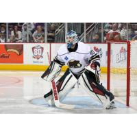Goaltender Mark Dekanich Signed to AHL Contract