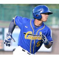 Saltdogs Pound out 19 Hits, Rout Canaries 13-5
