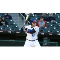 Bisons' Road Woes Continue, as Herd Falls 8-4 to Gwinnett