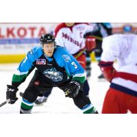 Speedy Breton, Relentless Perfetto Return to Alaska