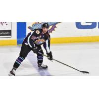 Defenseman Chris Bradley Joins Solar Bears for First Full Season