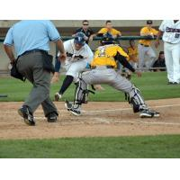 Bees Rally Late for 11-9 Win over Patriots