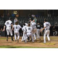 Rascals Record Walk-Off Win in Frontier League Playoff Opener