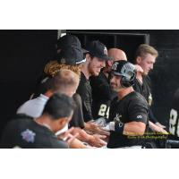 Rascals Open up Championship Series in Evansville