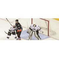 Reign Rally Late, Fall 4-3 in Preseason Shootout to Gulls