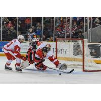 Greyhounds Weather Late 67's Charge, Win 4-1