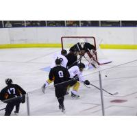 RiverKings Fall Short against Ice Bears