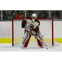 Storm Adds Goaltender Eric Dop from NAHL
