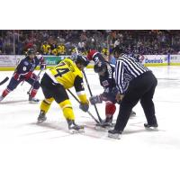 RiverKings Lose 4-3 to Mayhem