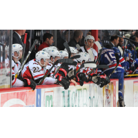 Englund Notches His First in B-Sens 4-1 Loss