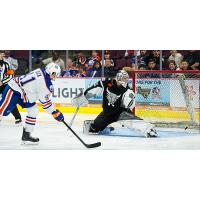 Condors Leading Scorer, Taylor Beck, Recalled by Edmonton