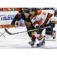 Komets Collect Three Points for Week Four