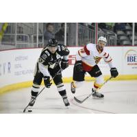 Nailers Winning Streak Stopped by Fuel