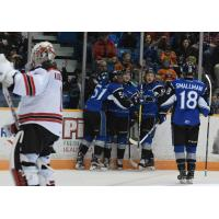Noel Stays Hot With Hat Trick In Seadogs Win Over Remparts