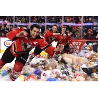 Hitmen Fans Toss 23,924 Plush Toys at the Brick Teddy Bear Toss 2016