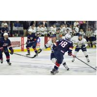 Stampede Roll over Team USA, 6-1