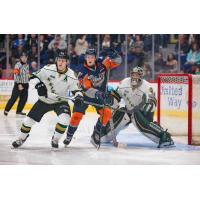 Firebirds Score Two in Sunday Loss to London