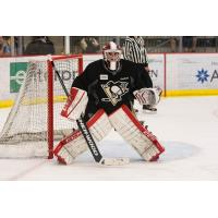 Nailers Receive Goaltender Sean Maguire