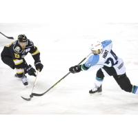 Colorado Tripped up in 4-1 Loss to Alaska