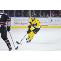 Bradshaw Moves up to ECHL Adirondack Thunder