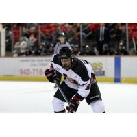 Storm Acquires F Jonathan Bendorf from NAHL