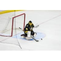 Peoria Shuts Down RiverKings 3-0