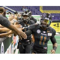 Rattlers Re-Sign DB Brown
