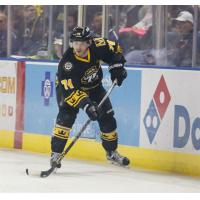 Harrington Loaned to ECHL Florida