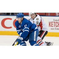 B-Sens Defeated by Quick-Scoring Marlies 4-2