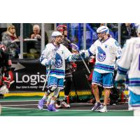 Knighthawks Rally to Ground Stealth